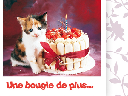 """Résultat de recherche d'images pour """"images gratuites d'anniversaire pour chat"""""""